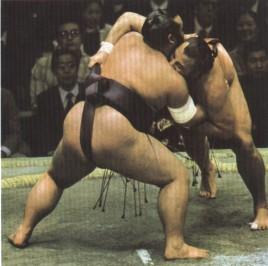 "Slika 3. Japanski ""Sumo"""